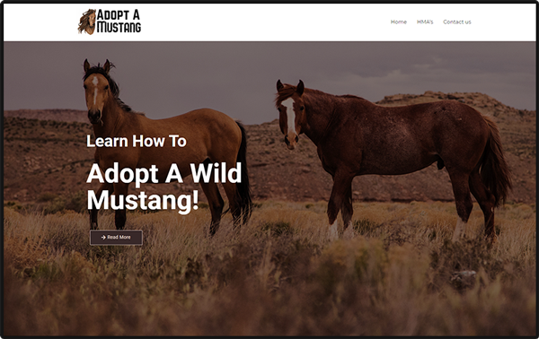 thumbnail image of the adopt a mustang website
